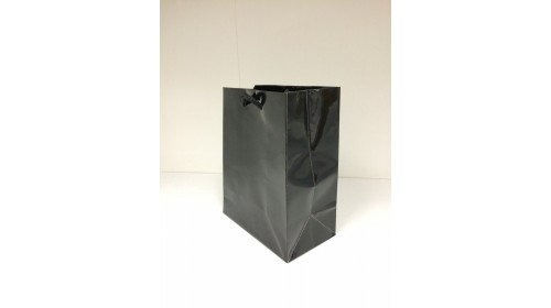 CB1 Small Rope Handled Bags x 100 - Gloss